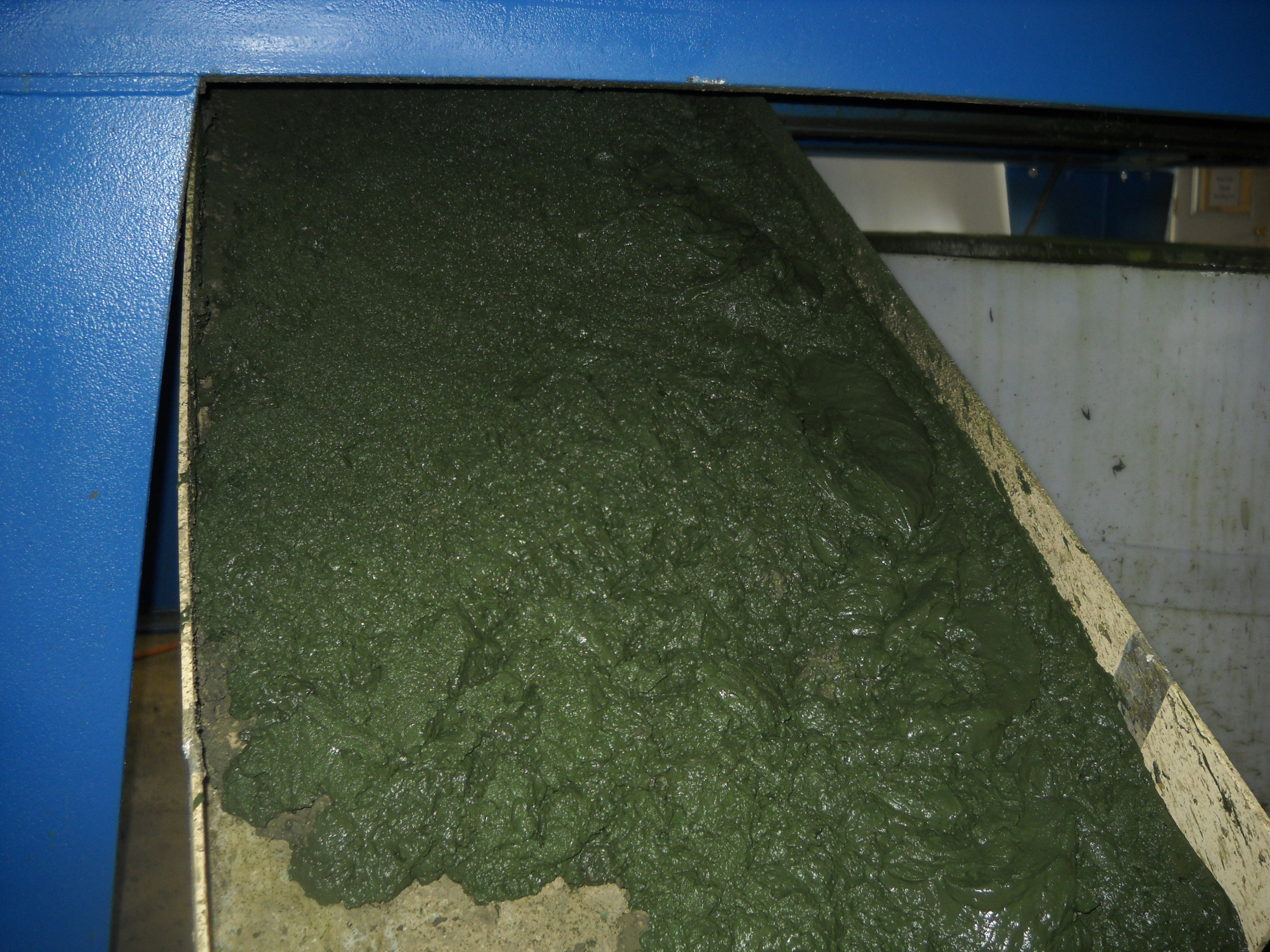 Algae Harvesting and Dewatering